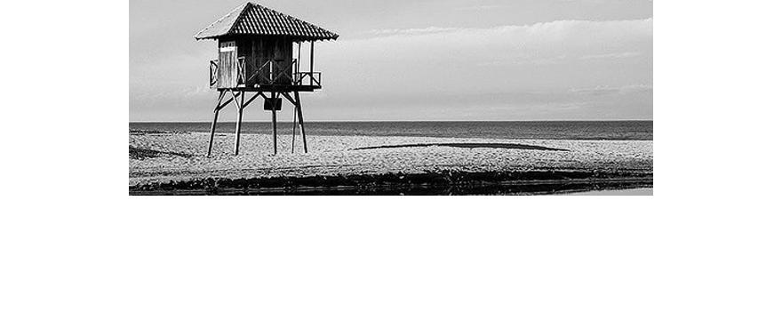 Praia Charmosa E Vida Noturna Badalada: PRAIA BRAVA